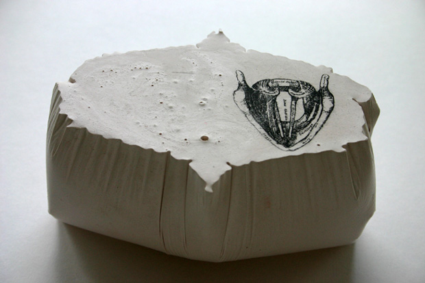 Benua Dalam/Inner Continents: Vocal Cords (Gray's Anatomy), 2005, Plaster, pigment and photocopy transfer.