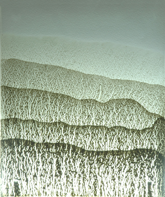 Detail of 'Plastic Shores'.