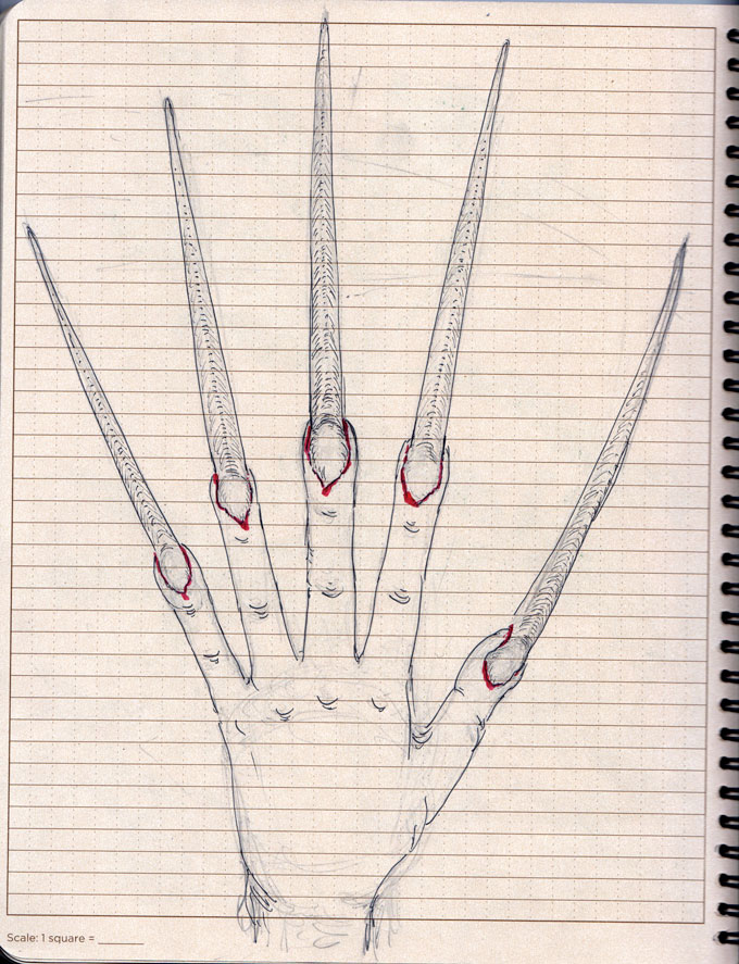 03-pontianakclaws_drawing3